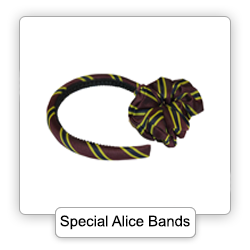 Special Alice Bands